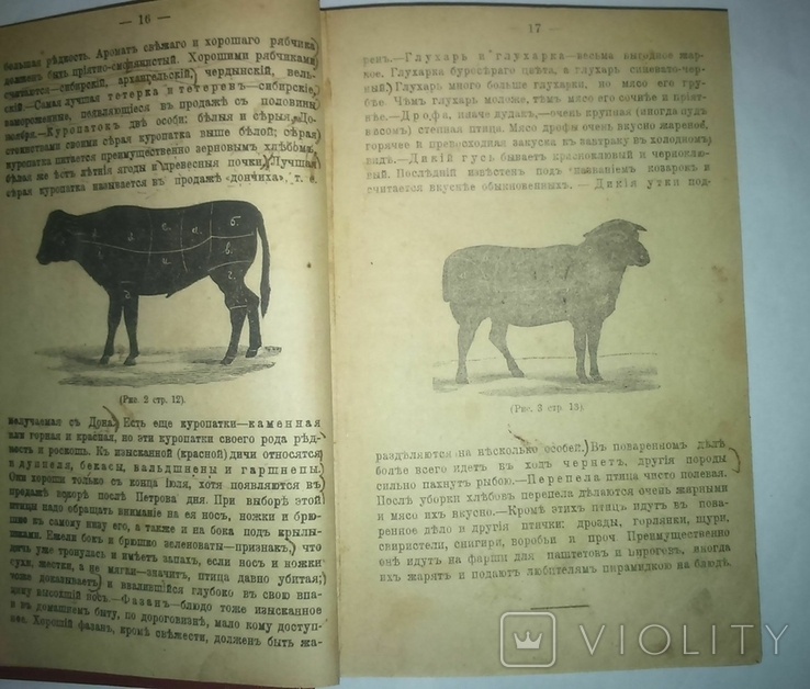 Настольная поваренная книга. Полное руководство. сост. Е. Малаховская. 1910 год, фото №7