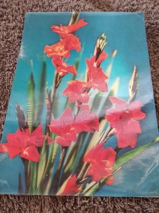Стерио-объёмная открытка цветы, фото №3