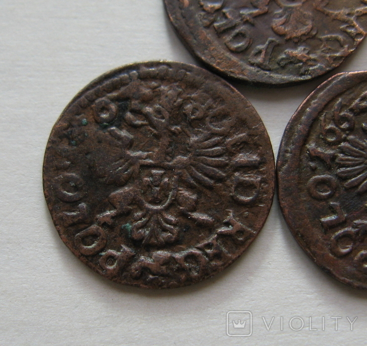 4. Солиды. Боратинки 1664 года. Ян ІІ Казимир Ваза ( 3 штуки )., фото №4