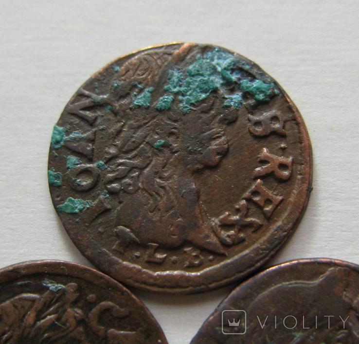 4. Солиды. Боратинки 1664 года. Ян ІІ Казимир Ваза ( 3 штуки )., фото №8