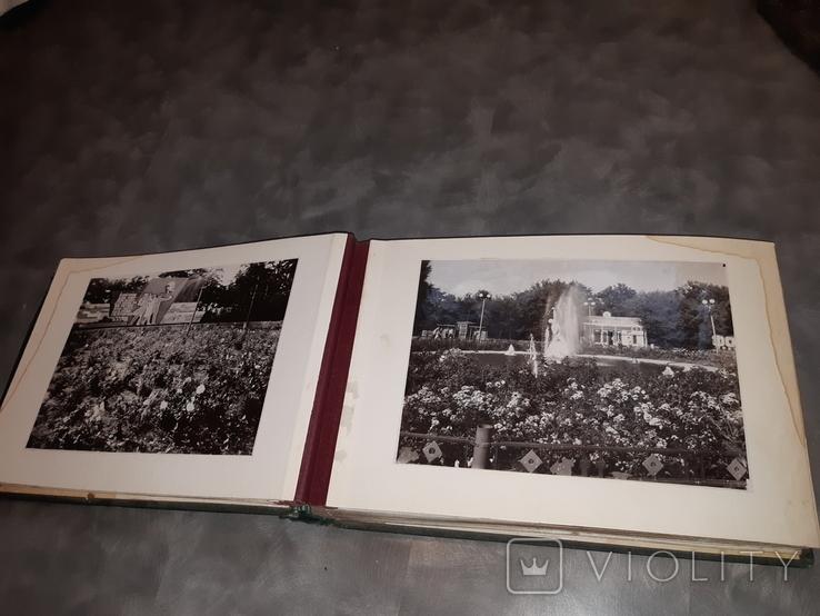 Альбом Благоустройство и озеленение Харькова ( 58 фотографий ), фото №5