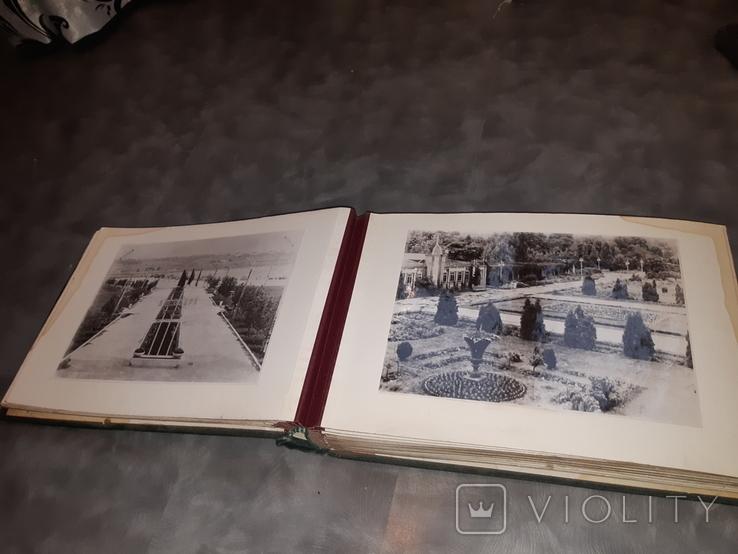 Альбом Благоустройство и озеленение Харькова ( 58 фотографий ), фото №7