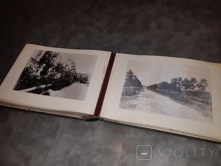 Альбом Благоустройство и озеленение Харькова ( 58 фотографий ), фото №10