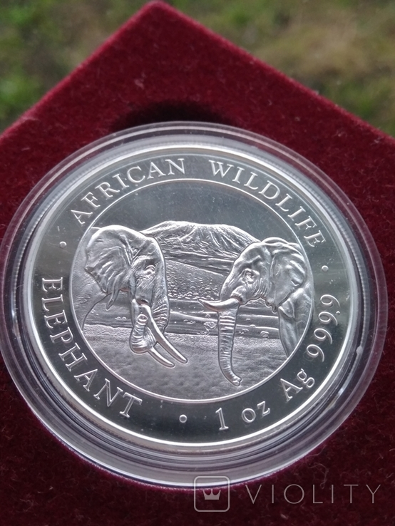 Слон Сомали 100 шиллингов 2020 г. 1oz 999.9 пробы унция Африканский слон, фото №2