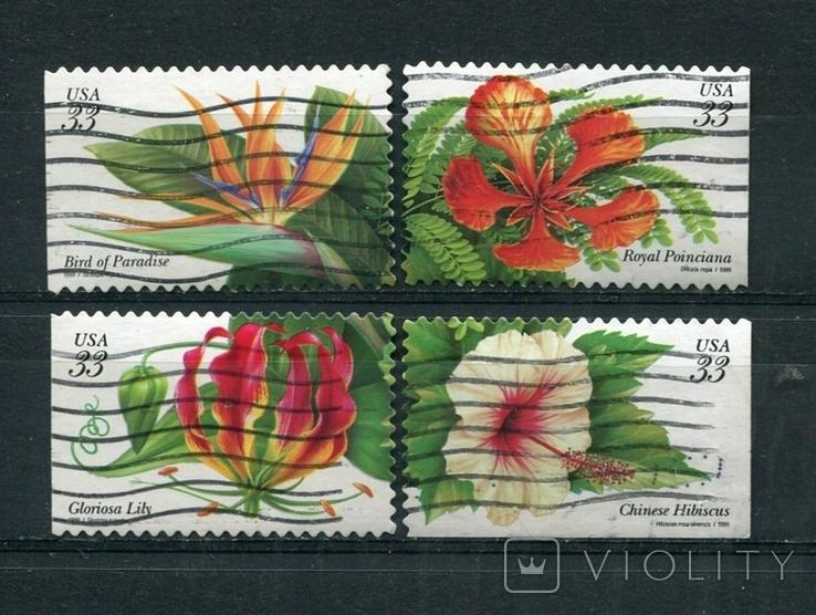 Марки гашеные США цветы растения флора
