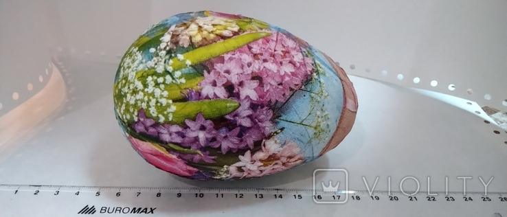 Яйцо 1, фото №4