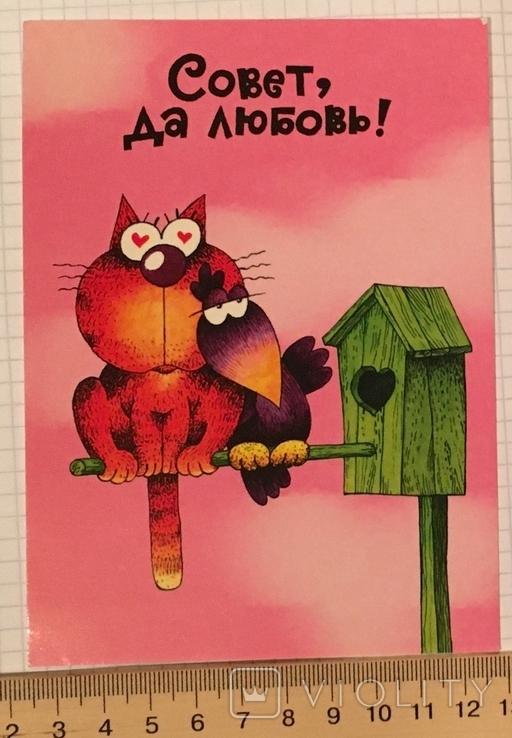 Открытка чистая: Совет да любовь! / худ-к С. Трубников, изд-во Нью Тон, фото №6