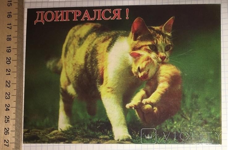 Открытка чистая: Доигрался! / Симферополь, фото №2