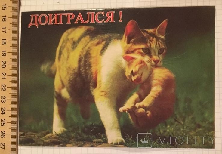 Открытка чистая: Доигрался! / Симферополь, фото №3