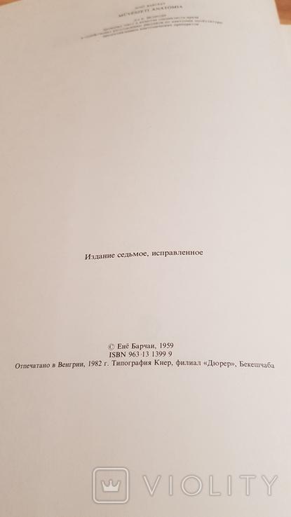 Анатомия для художников Ене Барчаи, фото №5