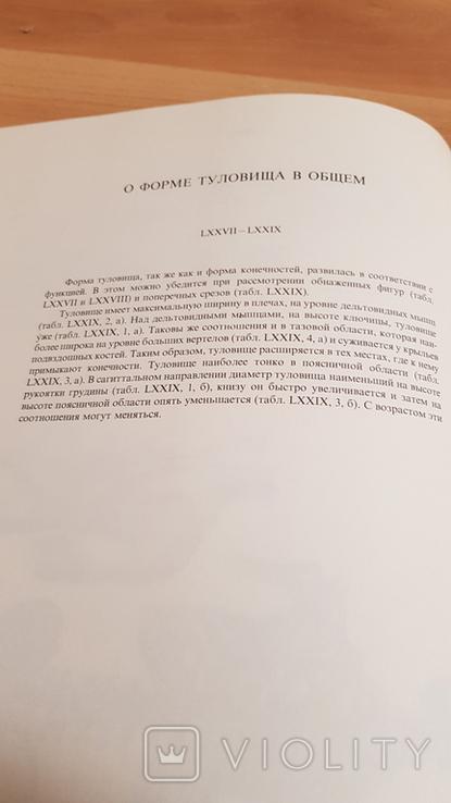 Анатомия для художников Ене Барчаи, фото №13