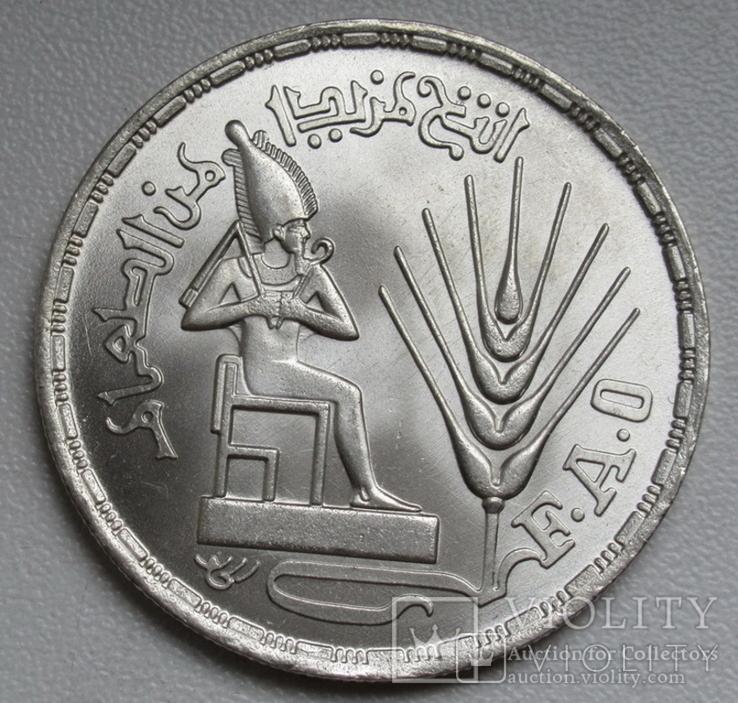"""1 фунт 1976 г. Египет """" ФАО """", серебро, фото №3"""