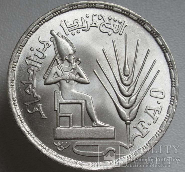 """1 фунт 1976 г. Египет """" ФАО """", серебро, фото №5"""
