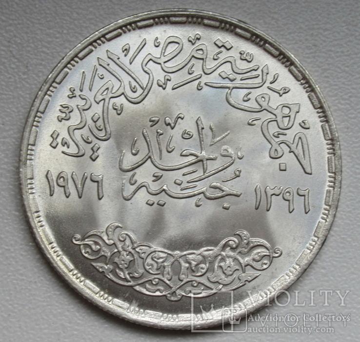 """1 фунт 1976 г. Египет """" ФАО """", серебро, фото №10"""