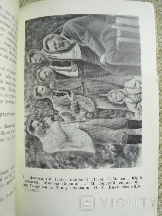 Таємниці розгадано. Оповідання літературознавця 1966, фото №7
