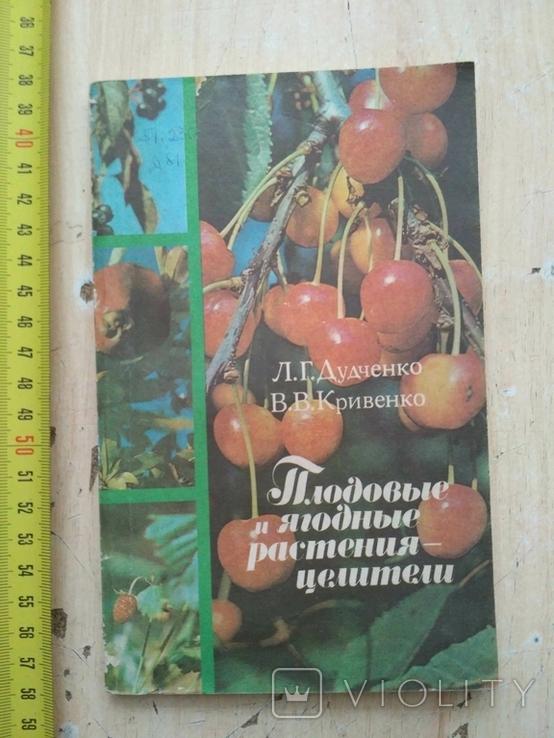"""Дудченко """"Плодовые и ягодные растения целители"""" 1987р., фото №2"""
