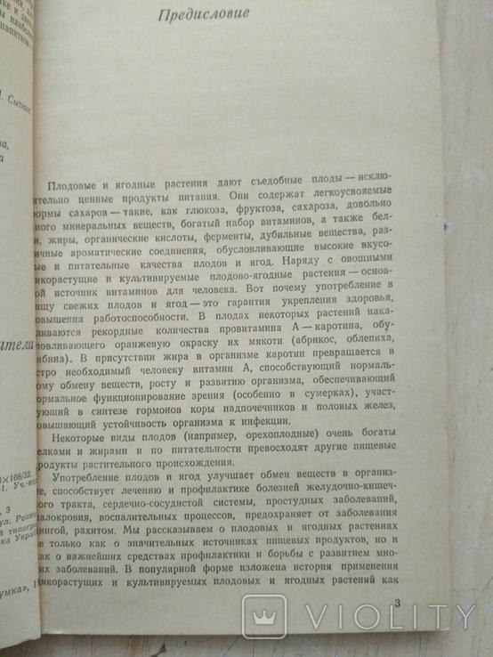 """Дудченко """"Плодовые и ягодные растения целители"""" 1987р., фото №9"""
