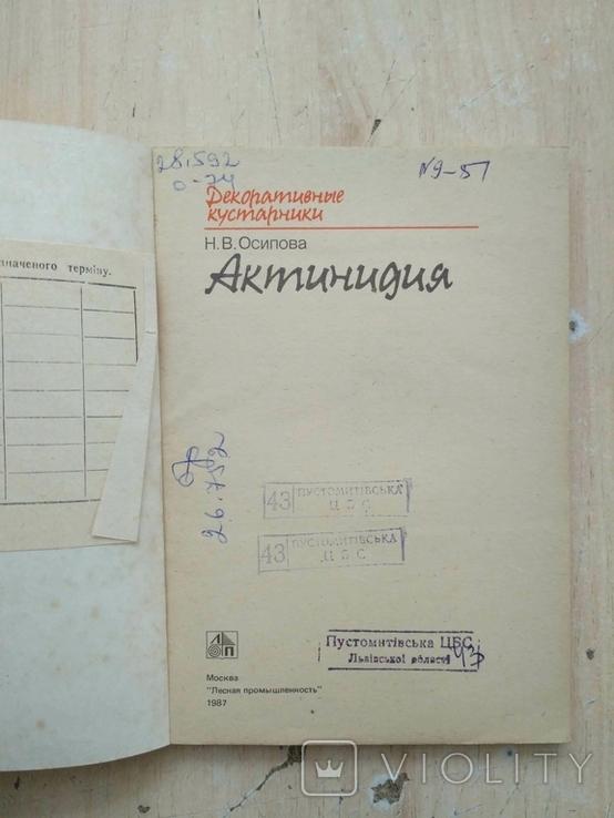 """Осипова """"Актинидия"""" 1987р., фото №8"""