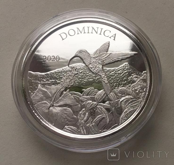 Экзотика Колибри Восточные Карибы Доминика 2020 Dominica, фото №3