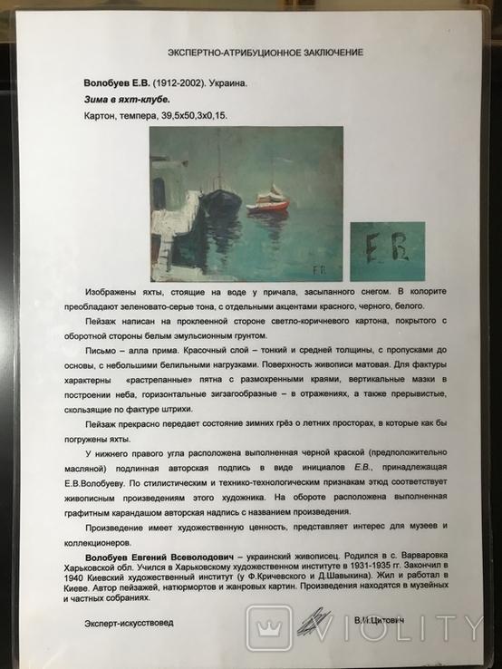 Волобуев Е.В. (1912-2002) Зима в яхт-клубе. Заключение Цитовича., фото №4