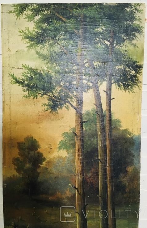 Картина P. Rogozinzki, 1909 год, фото №4