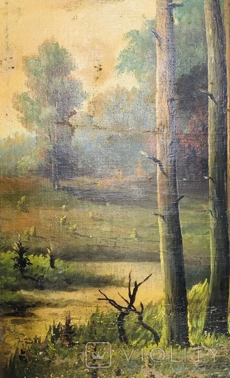 Картина P. Rogozinzki, 1909 год, фото №5