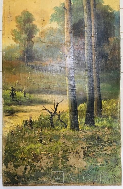 Картина P. Rogozinzki, 1909 год, фото №11