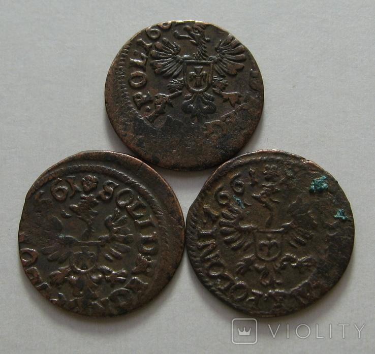 61. Солиды. Боратинки 1661 года. Ян ІІ Казимир Ваза ( 3 штуки )., фото №8
