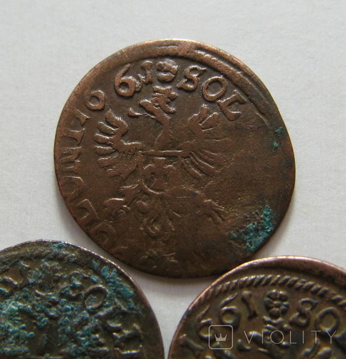 62. Солиды. Боратинки 1661 года. Ян ІІ Казимир Ваза ( 3 штуки )., фото №9
