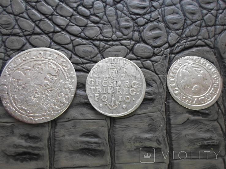 Монеты Сигизмунда, фото №6