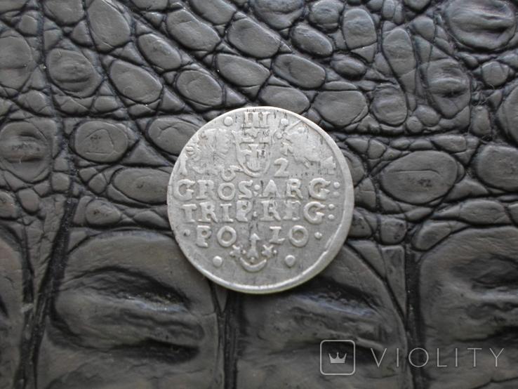 Монеты Сигизмунда, фото №12