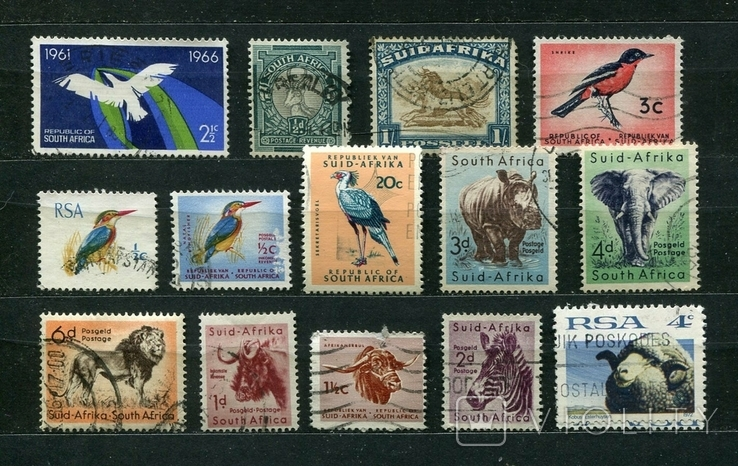 Южная Африка, фауна, (подборка)