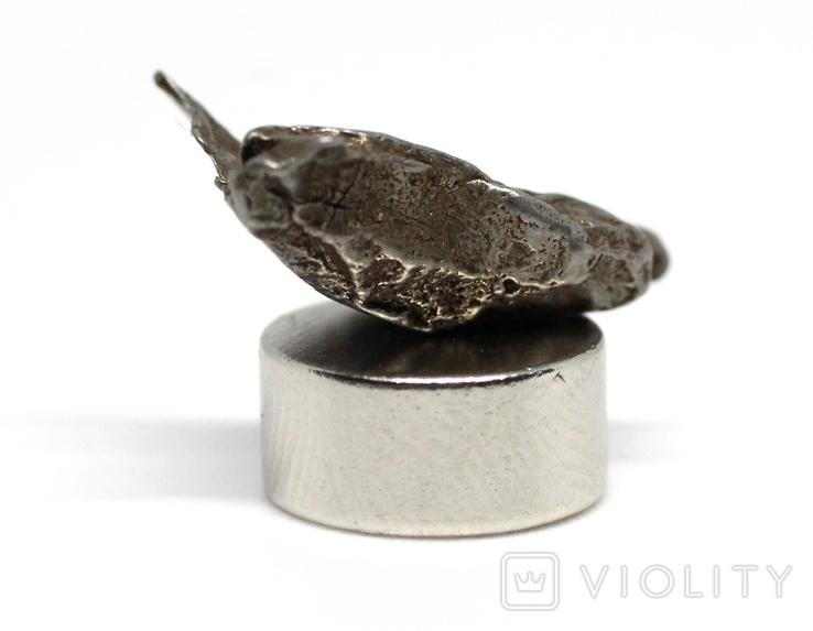 Залізний метеорит Campo del Cielo, 1,7 грам, із сертифікатом автентичності, фото №7