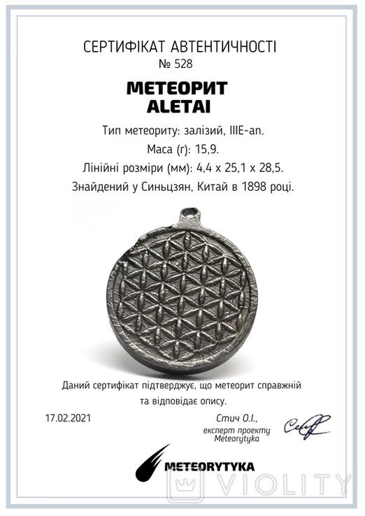 """Двохсторонній круглий кулон з геометричним орнаментом """"Квітка життя"""" із метеорита Aletai, фото №3"""
