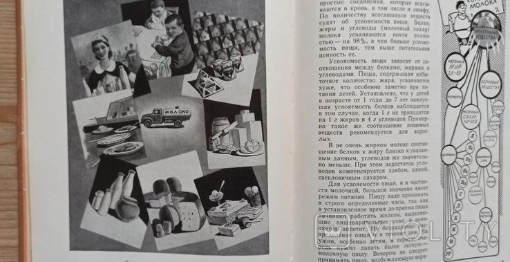 Молочная еда. 1962 год., фото №6