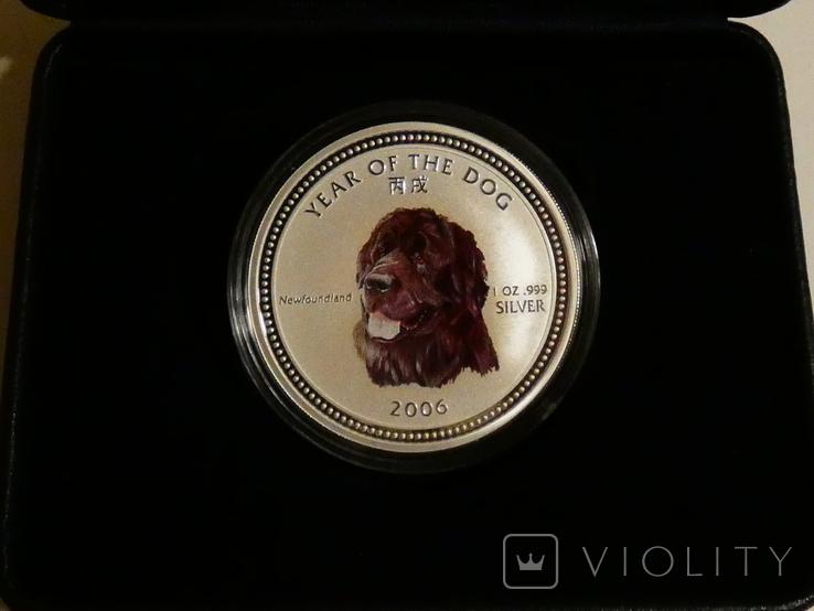 Год Собаки, НЬЮФАУНДЛЕНД - серебро 999, унция - ПОЛНЫЙ КОМПЛЕКТ, фото №2