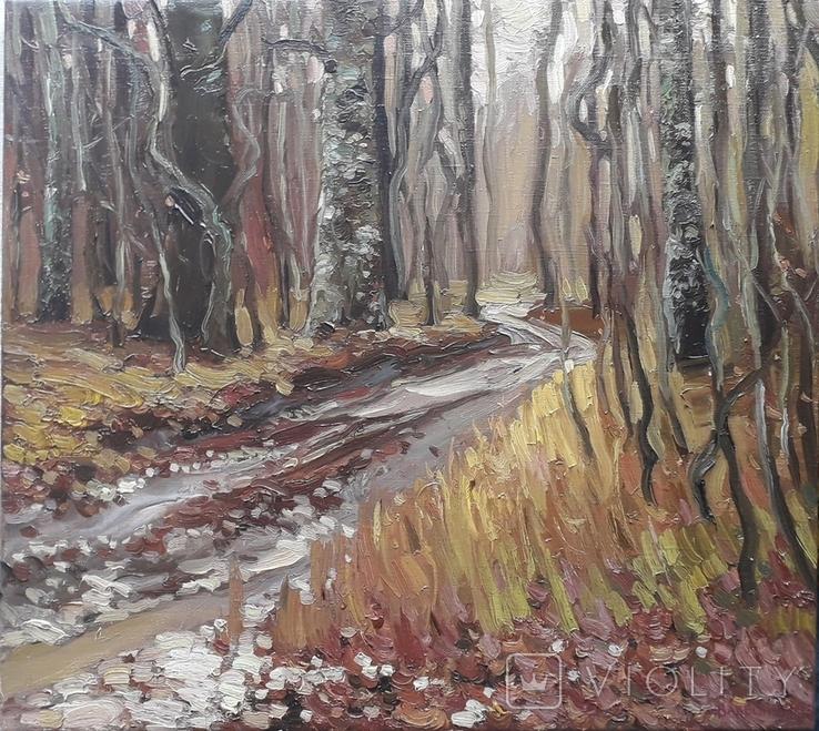 Дубовый лес. Этюд с натуры. х.м, фото №2