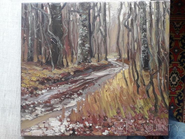 Дубовый лес. Этюд с натуры. х.м, фото №6