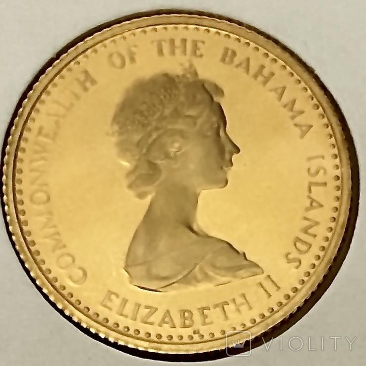 20 долларов. 1971. Багамские острова (золото 917), фото №6