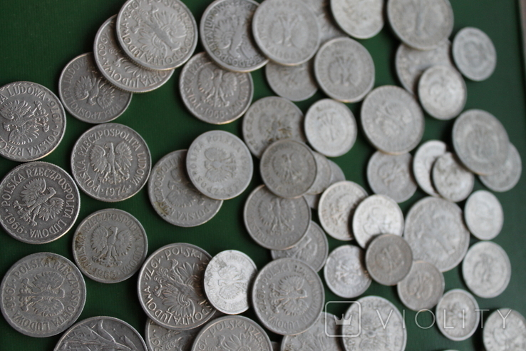 Польша 64 монеты одним лотом, фото №4