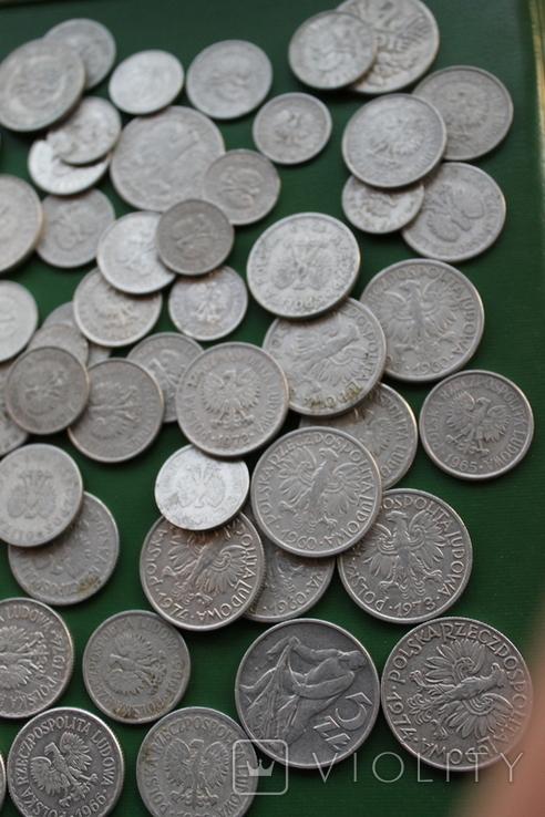 Польша 64 монеты одним лотом, фото №5