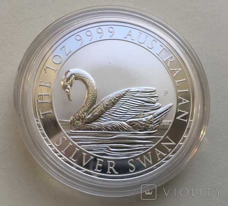 1-й в серии Лебедь Австралии 2017 Swan, фото №2