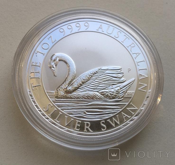 1-й в серии Лебедь Австралии 2017 Swan, фото №4