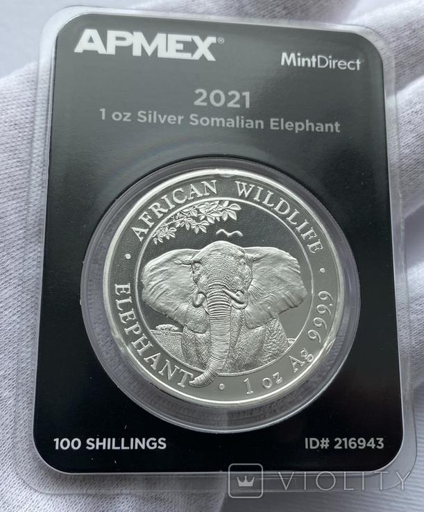 Слон Сомали 2021 слаб Apmex slab, фото №2