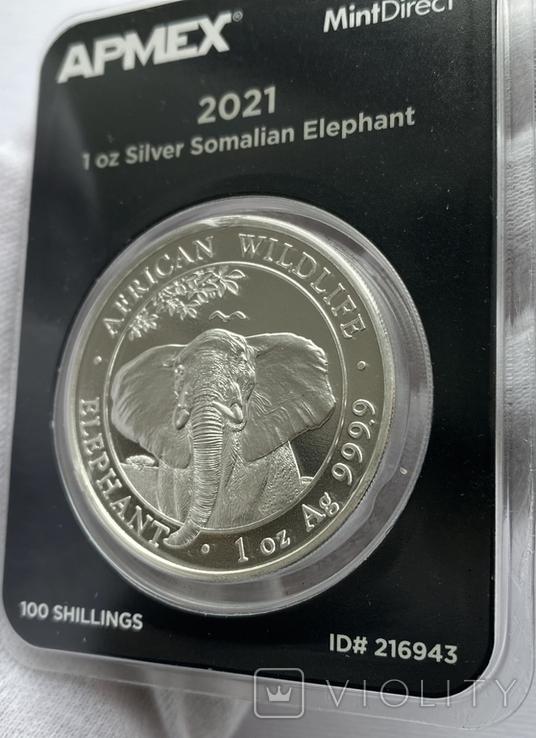 Слон Сомали 2021 слаб Apmex slab, фото №4