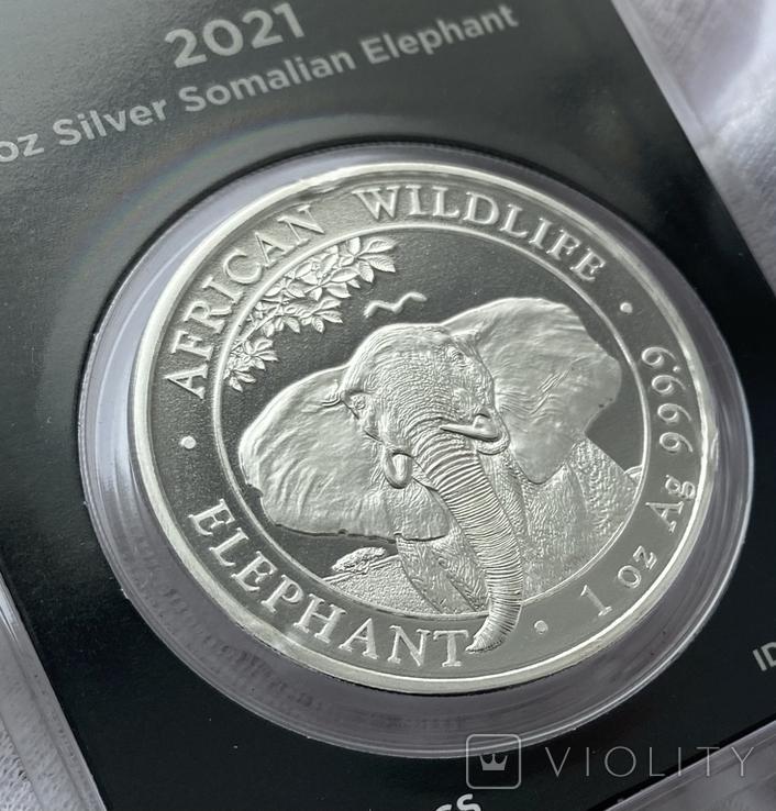 Слон Сомали 2021 слаб Apmex slab, фото №5
