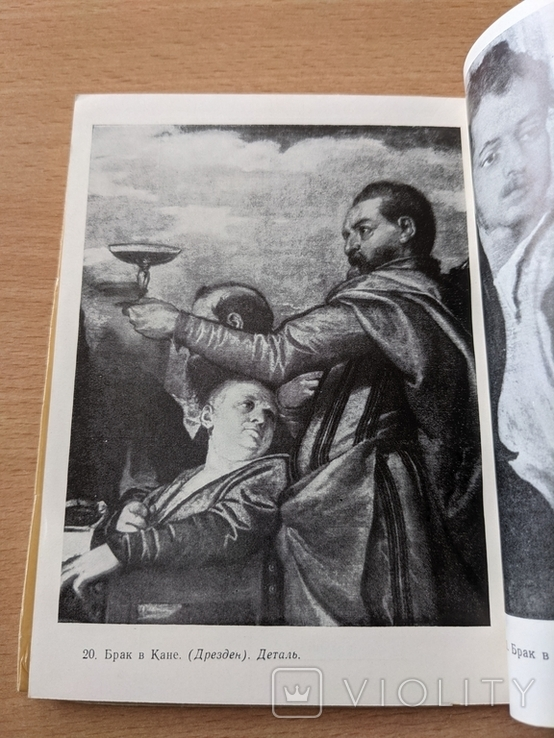 Антонова. Веронезе. 1957, фото №5