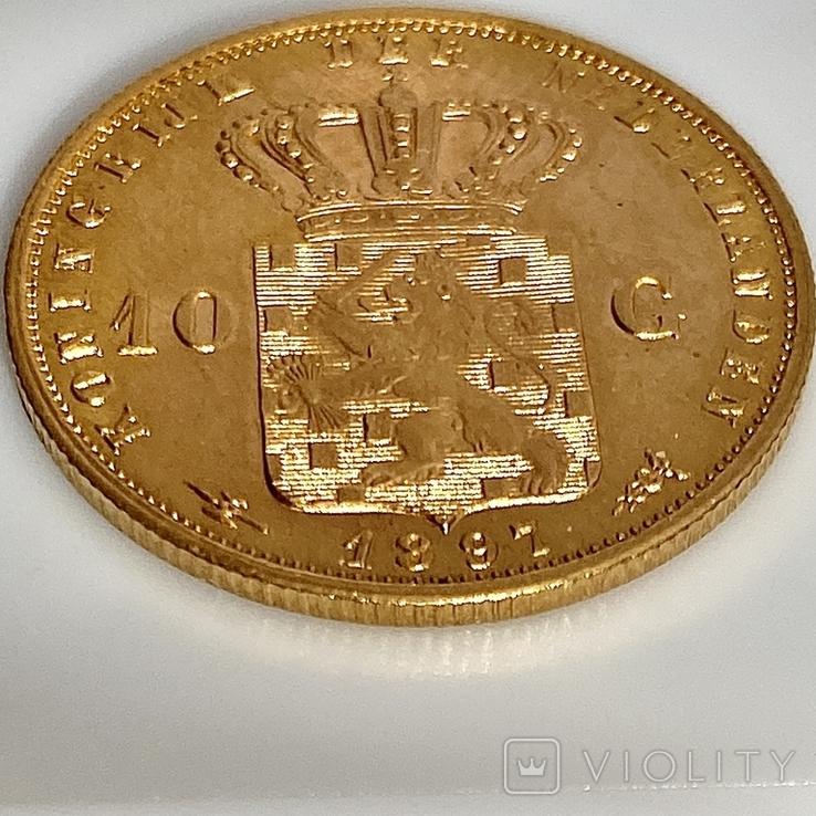 10 гульденов. 1897. Королева Вильгельмина. Нидерланды (золото 900, вес 6,66 г), фото №8