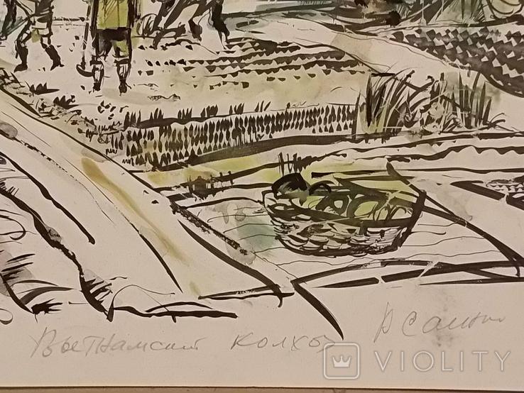 Вьетнамские колхозы.1985 год., фото №5