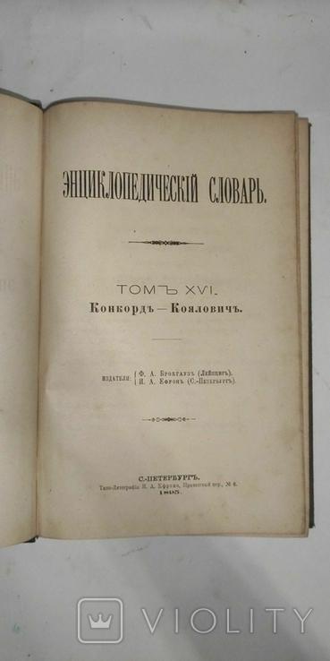 Энциклопедический словарь Брокгауз и Ефрон 21 том, фото №5